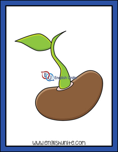 clip art - sprout