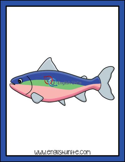 clip art - trout