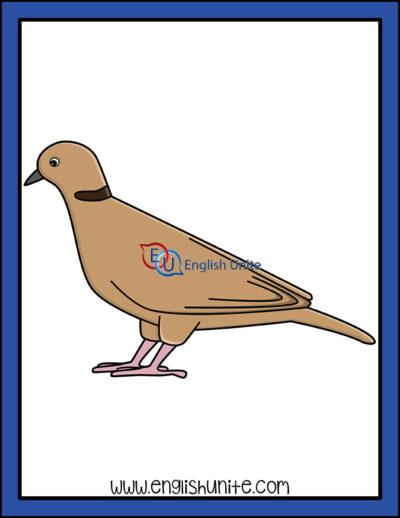 clip art - dove