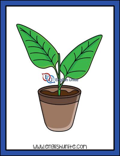 clip art - plant
