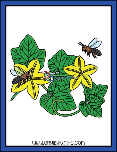 clip art - pollination