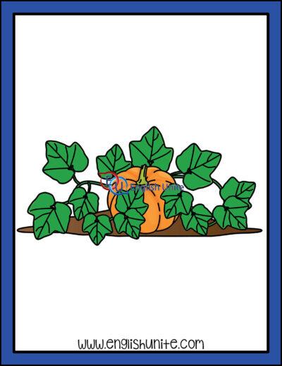 clip art - pumpkin vine