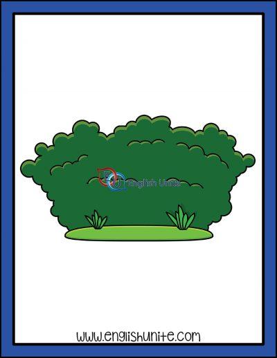 clip art - hedge